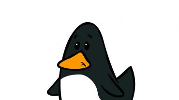'.esc_attr__('image', 'little-birdies').'
